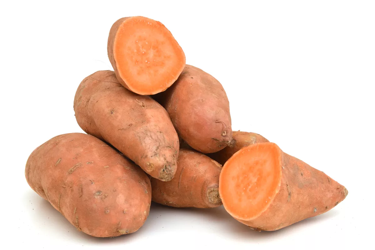 Sweet Potato Sync With Nature
