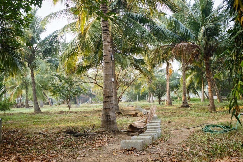 Jacbo and Klooster Farm Chennai